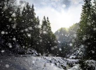 Снова снег :-)